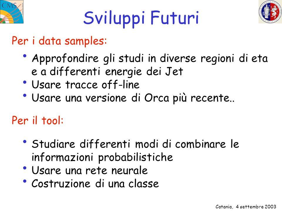 Catania, 4 settembre 2003 Sviluppi Futuri Approfondire gli studi in diverse regioni di eta e a differenti energie dei Jet Usare tracce off-line Usare