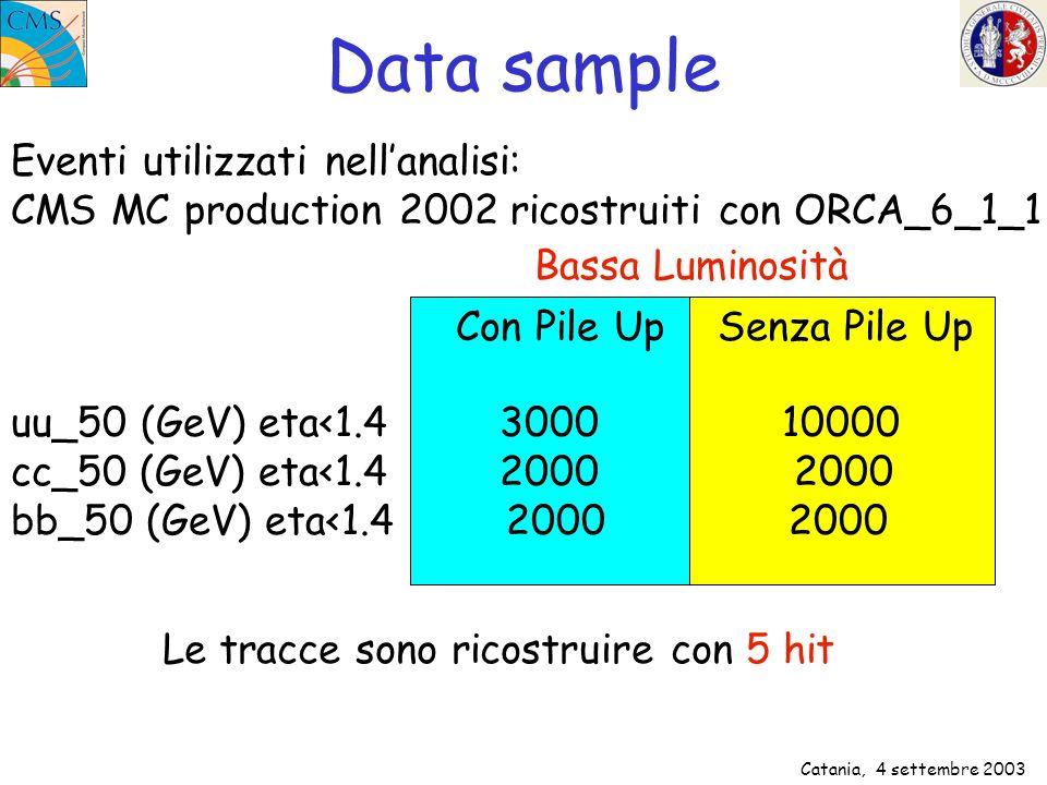 Catania, 4 settembre 2003 Data sample Eventi utilizzati nellanalisi: CMS MC production 2002 ricostruiti con ORCA_6_1_1 Bassa Luminosità Con Pile UpSen