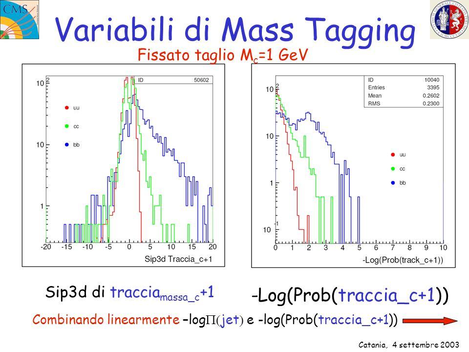 Catania, 4 settembre 2003 Variabili di Mass Tagging Sip3d di traccia massa_c +1 -Log(Prob(traccia_c+1)) Combinando linearmente –log jet e -log(Prob(tr
