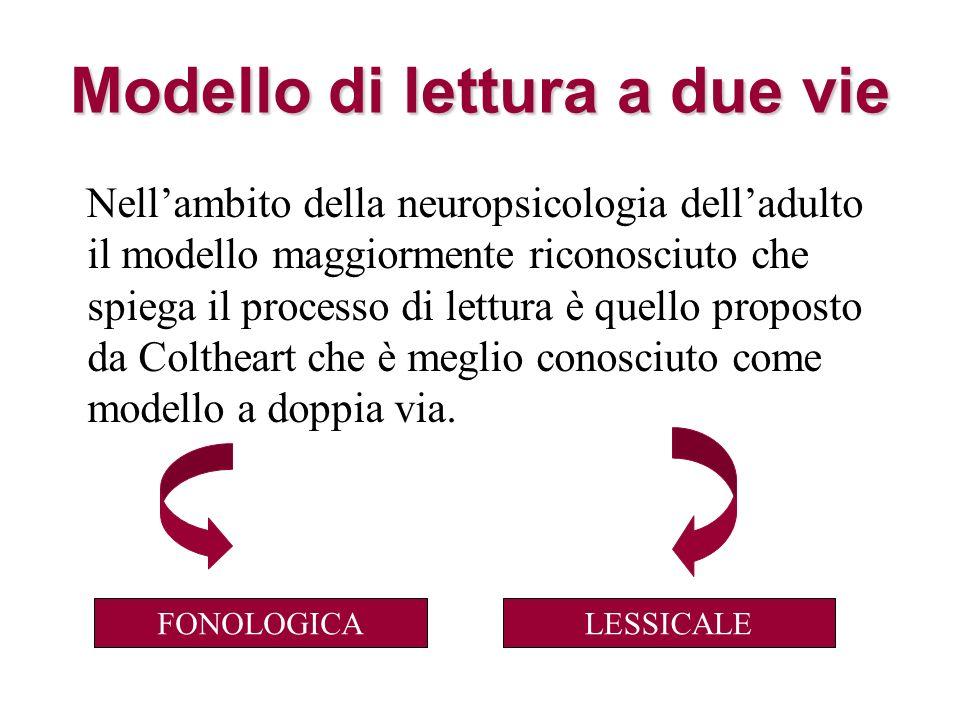 Modellodi lettura a due vie Modello di lettura a due vie Nellambito della neuropsicologia delladulto il modello maggiormente riconosciuto che spiega i