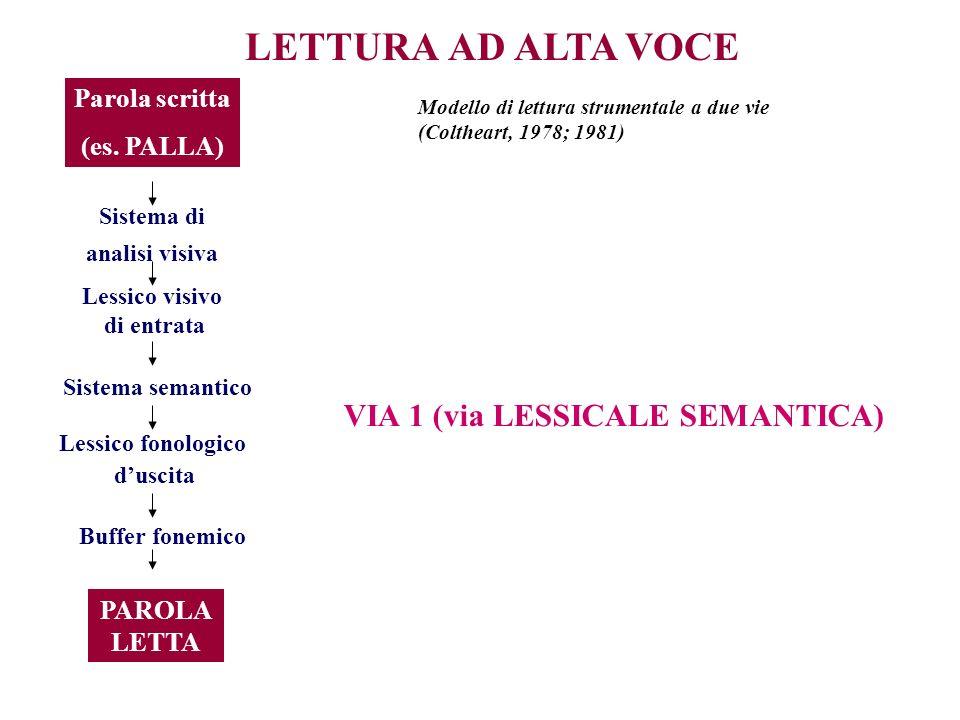 LETTURA AD ALTA VOCE Parola scritta (es. PALLA) Sistema di analisi visiva Lessico visivo di entrata Sistema semantico Lessico fonologico duscita Buffe