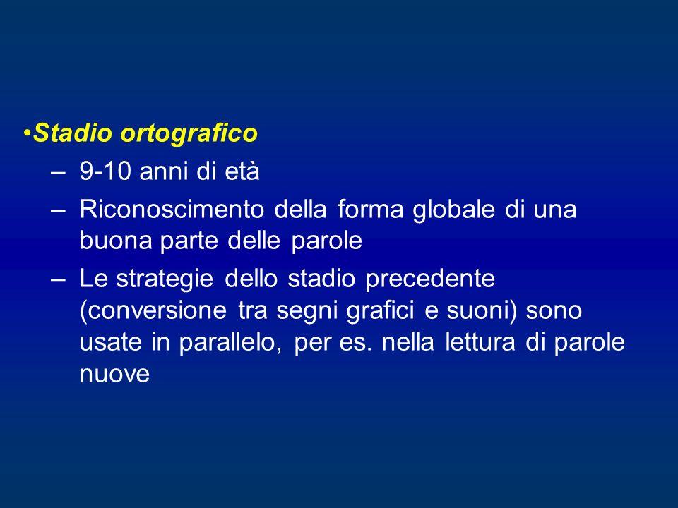 Stadio ortografico –9-10 anni di età –Riconoscimento della forma globale di una buona parte delle parole –Le strategie dello stadio precedente (conver