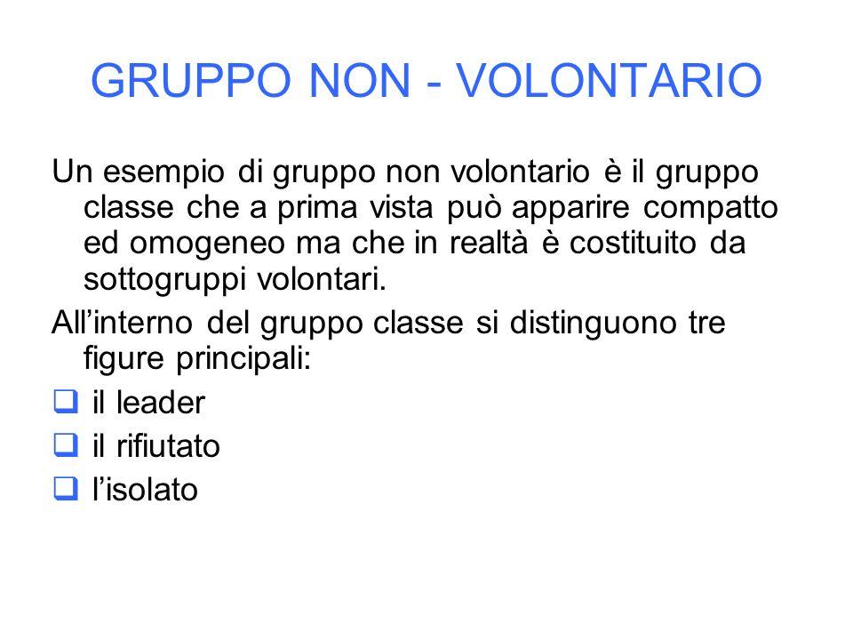 GRUPPO NON - VOLONTARIO Un esempio di gruppo non volontario è il gruppo classe che a prima vista può apparire compatto ed omogeneo ma che in realtà è