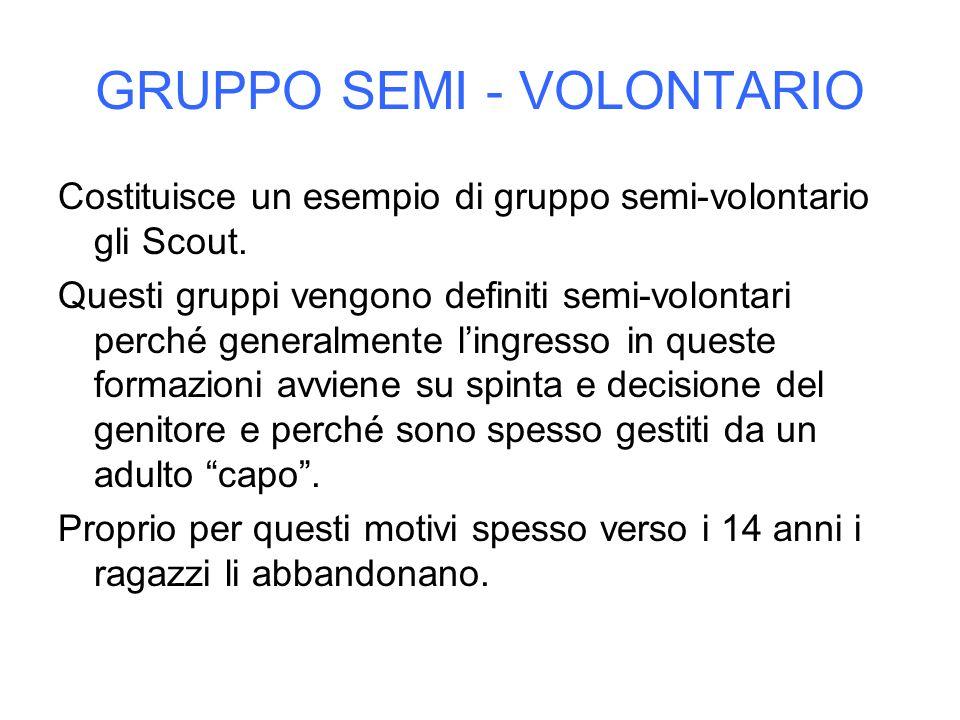 GRUPPO SEMI - VOLONTARIO Costituisce un esempio di gruppo semi-volontario gli Scout. Questi gruppi vengono definiti semi-volontari perché generalmente