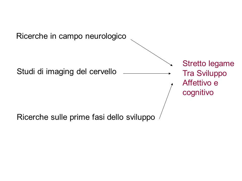 Ricerche in campo neurologico Studi di imaging del cervello Ricerche sulle prime fasi dello sviluppo Stretto legame Tra Sviluppo Affettivo e cognitivo