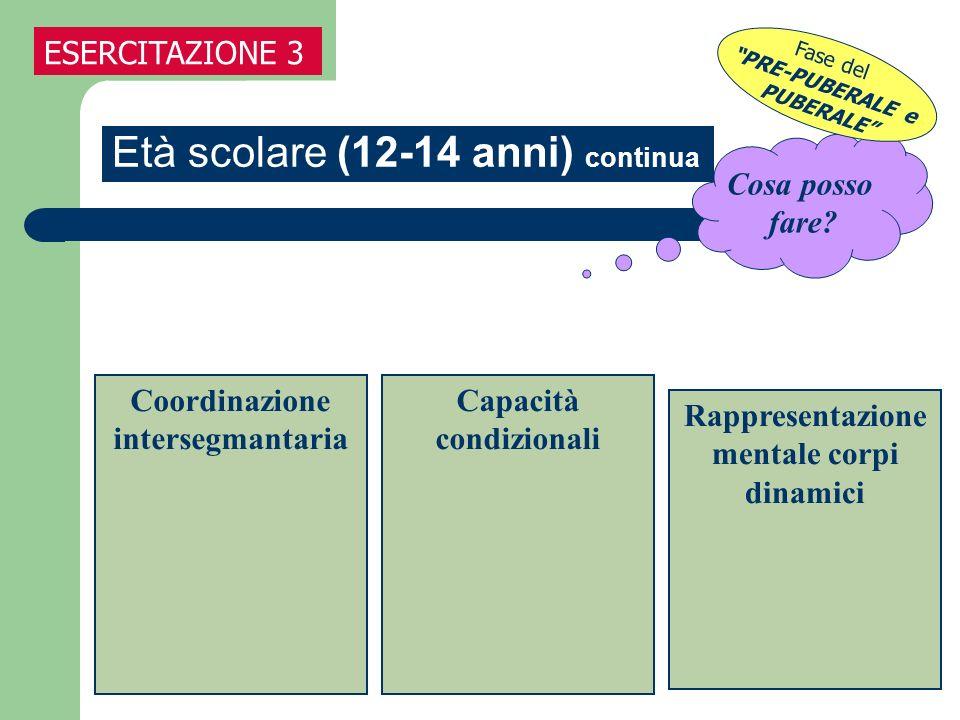 Cosa posso fare? Età scolare (12-14 anni) continua ESERCITAZIONE 3 Coordinazione intersegmantaria Capacità condizionali Rappresentazione mentale corpi