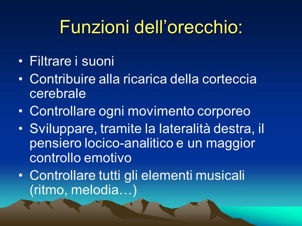 Funzioni dellorecchio: Filtrare i suoni Contribuire alla ricarica della corteccia cerebrale Controllare ogni movimento corporeo Sviluppare, tramite la