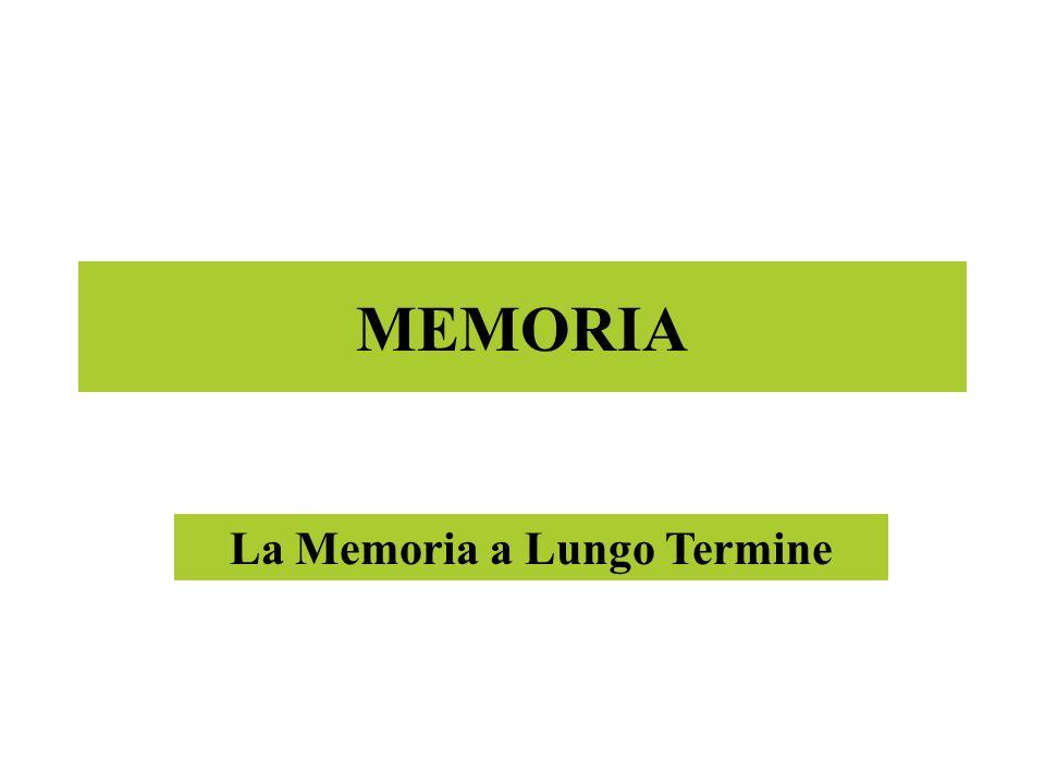 MEMORIA La Memoria a Lungo Termine