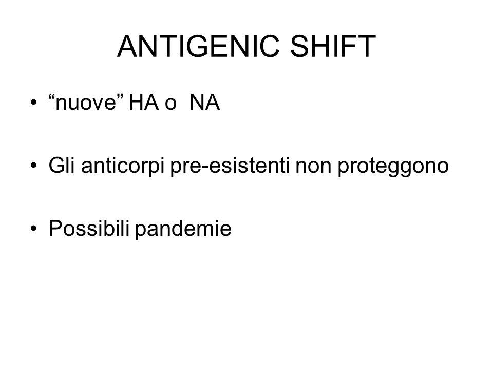 ANTIGENIC SHIFT nuove HA o NA Gli anticorpi pre-esistenti non proteggono Possibili pandemie