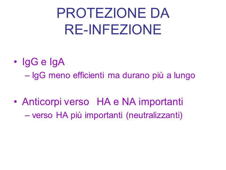 PROTEZIONE DA RE-INFEZIONE IgG e IgA –IgG meno efficienti ma durano più a lungo Anticorpi verso HA e NA importanti –verso HA più importanti (neutraliz
