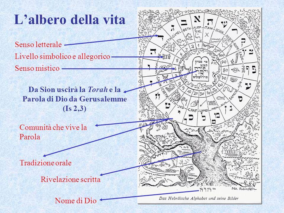 Lalbero della vita Nome di Dio Rivelazione scritta Tradizione orale Senso letterale Livello simbolico e allegorico Senso mistico Comunità che vive la