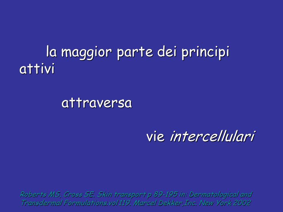 la maggior parte dei principi attivi la maggior parte dei principi attivi attraversa attraversa vie intercellulari vie intercellulari Roberts MS, Cros