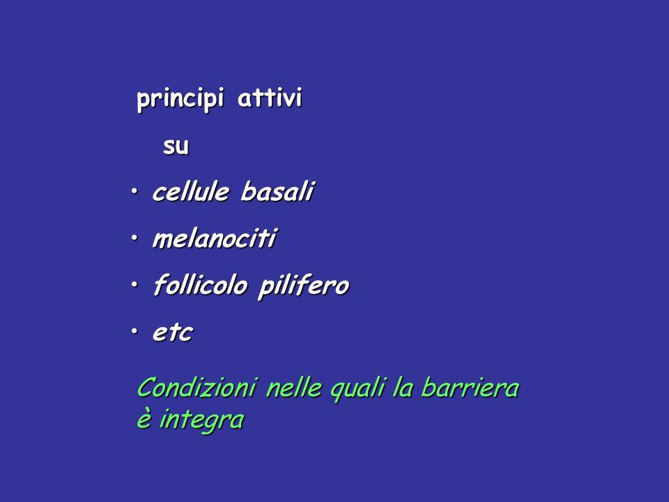 principi attivi su su cellule basali cellule basali melanociti melanociti follicolo pilifero follicolo pilifero etc etc Condizioni nelle quali la barr