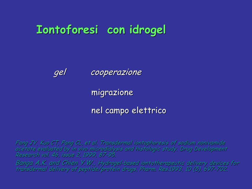 Iontoforesi con idrogel Iontoforesi con idrogel gel cooperazione gel cooperazione migrazione migrazione nel campo elettrico nel campo elettrico Fang J
