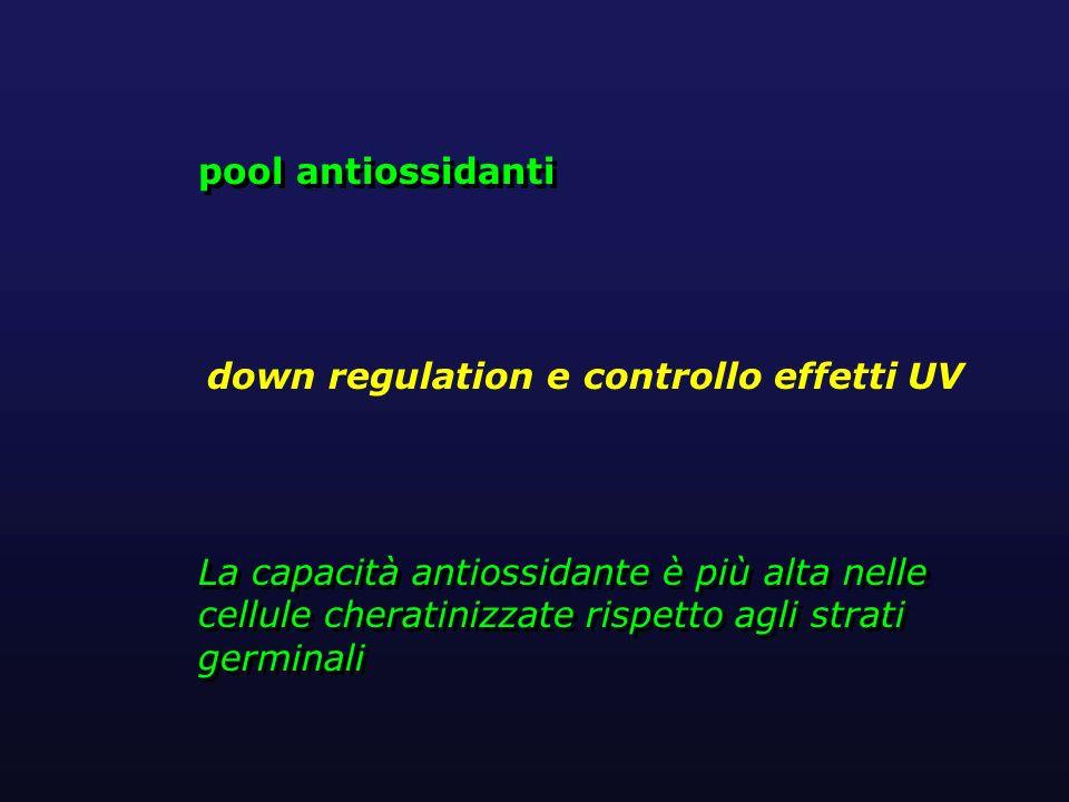 La capacità antiossidante è più alta nelle cellule cheratinizzate rispetto agli strati germinali pool antiossidanti pool antiossidanti down regulation
