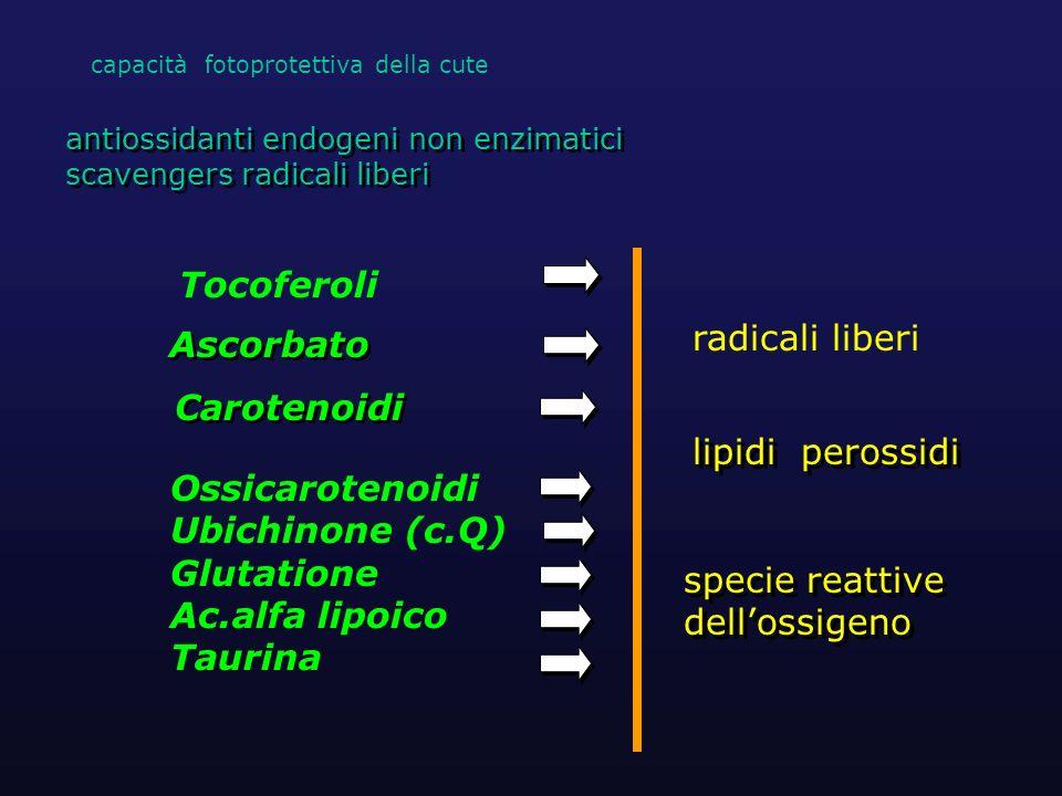 Ascorbato antiossidanti endogeni non enzimatici scavengers radicali liberi antiossidanti endogeni non enzimatici scavengers radicali liberi Carotenoid