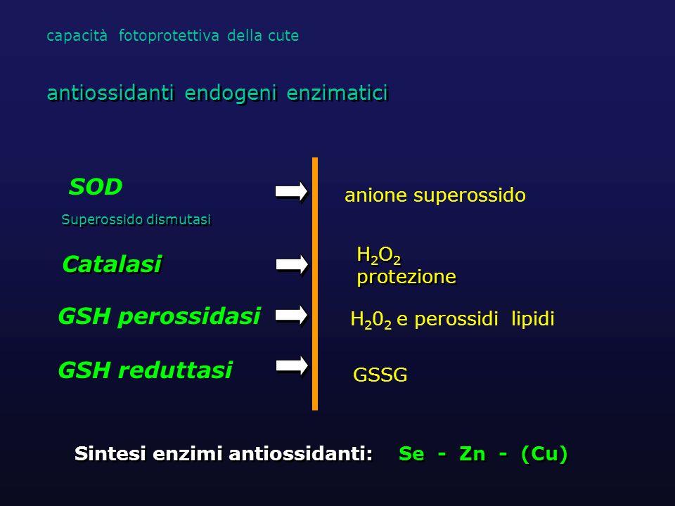 H 2 O 2 protezione H 2 O 2 protezione Catalasi Sintesi enzimi antiossidanti: Se - Zn - (Cu) antiossidanti endogeni enzimatici SOD Superossido dismutas