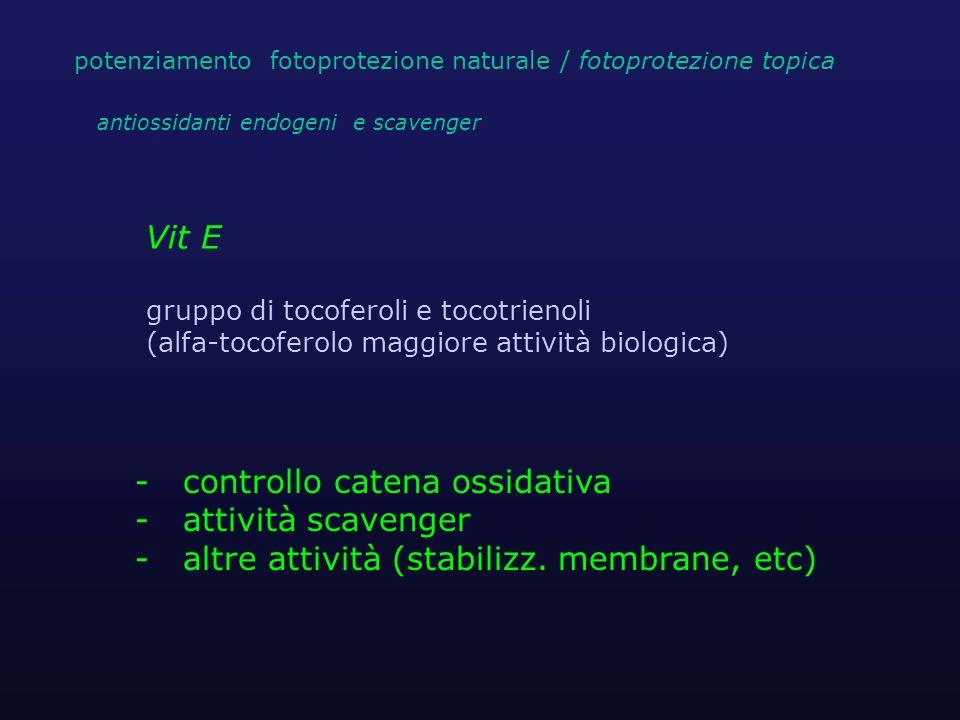 Vit E gruppo di tocoferoli e tocotrienoli (alfa-tocoferolo maggiore attività biologica) - controllo catena ossidativa - attività scavenger - altre att