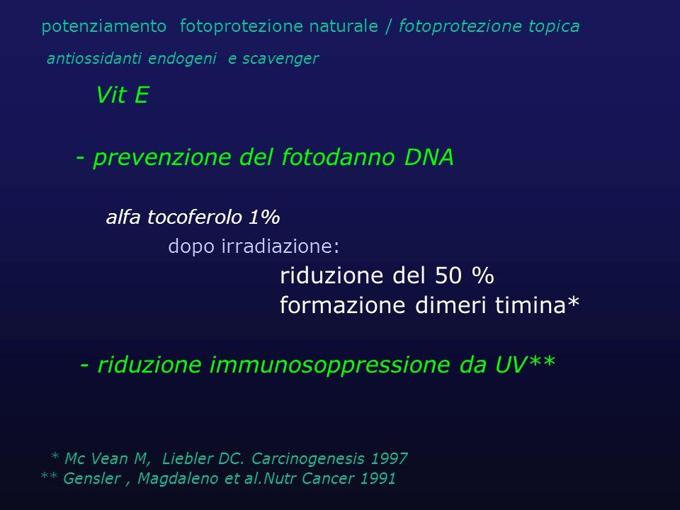 Vit E alfa tocoferolo 1% dopo irradiazione: riduzione del 50 % formazione dimeri timina* - riduzione immunosoppressione da UV** * Mc Vean M, Liebler D