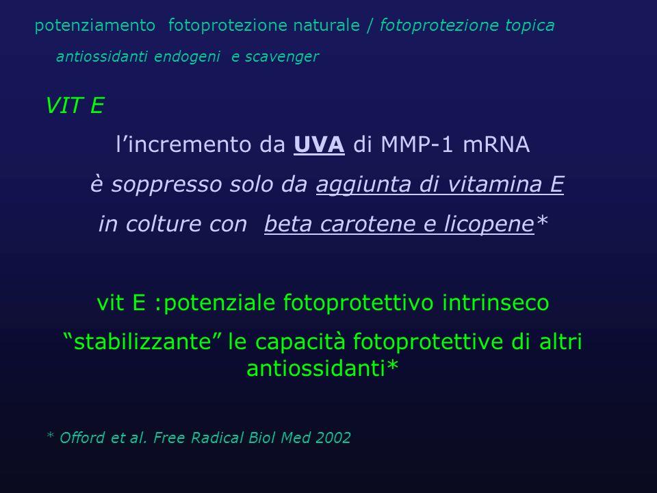 VIT E lincremento da UVA di MMP-1 mRNA è soppresso solo da aggiunta di vitamina E in colture con beta carotene e licopene* vit E :potenziale fotoprote