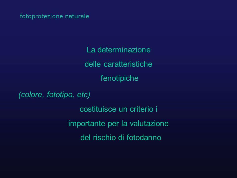 La determinazione delle caratteristiche fenotipiche (colore, fototipo, etc) costituisce un criterio i importante per la valutazione del rischio di fot