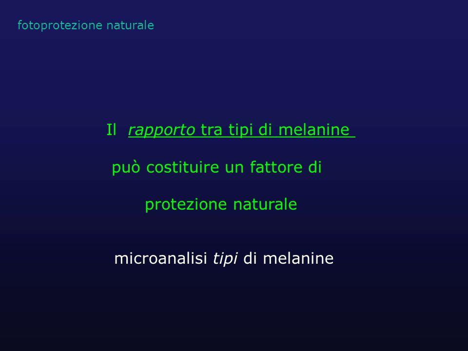 Il rapporto tra tipi di melanine può costituire un fattore di protezione naturale fotoprotezione naturale microanalisi tipi di melanine