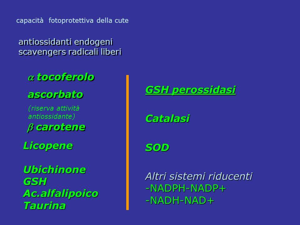 tocoferolo ascorbato antiossidanti endogeni scavengers radicali liberi antiossidanti endogeni scavengers radicali liberi carotene capacità fotoprotett