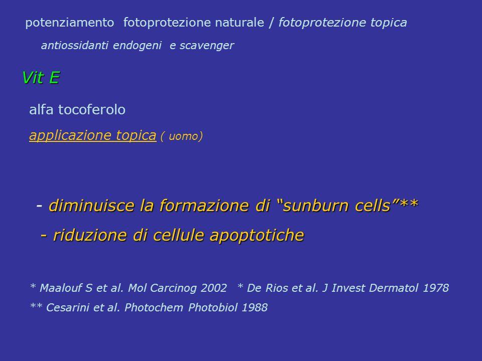 alfa tocoferolo applicazione topica ( uomo) diminuisce la formazione di sunburn cells** - diminuisce la formazione di sunburn cells** - riduzione di c