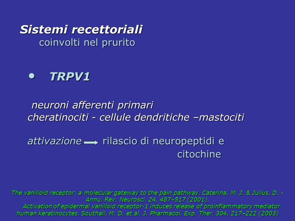 TRPV1 TRPV1 neuroni afferenti primari neuroni afferenti primari cheratinociti - cellule dendritiche –mastociti attivazione rilascio di neuropeptidi e