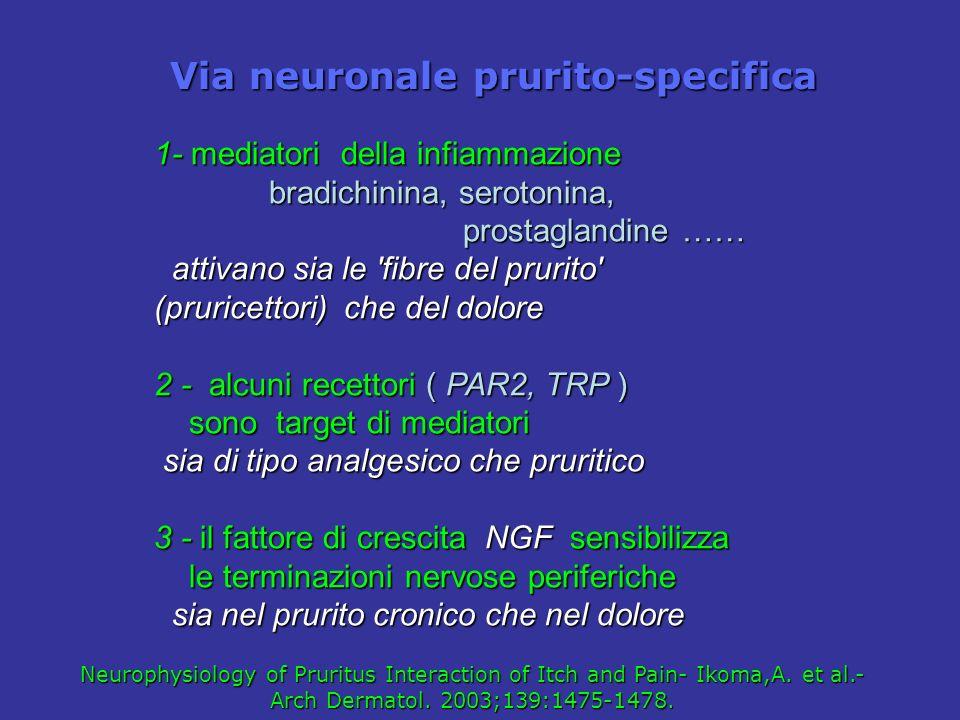 1- mediatori della infiammazione bradichinina, serotonina, bradichinina, serotonina, prostaglandine …… prostaglandine …… attivano sia le 'fibre del pr