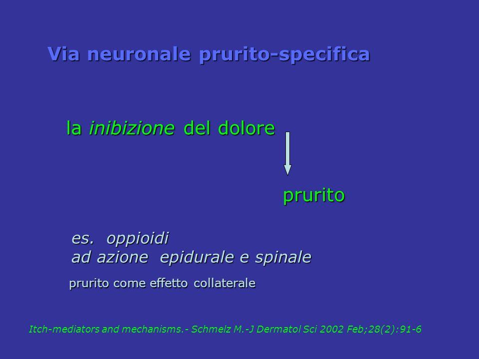 la inibizione del dolore prurito prurito es. oppioidi es. oppioidi ad azione epidurale e spinale ad azione epidurale e spinale prurito come effetto co