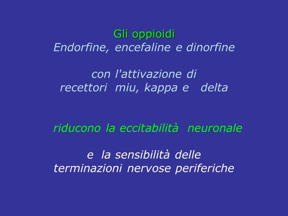 Gli oppioidi Endorfine, encefaline e dinorfine con l'attivazione di recettori miu, kappa e delta riducono la eccitabilità neuronale e la sensibilità d