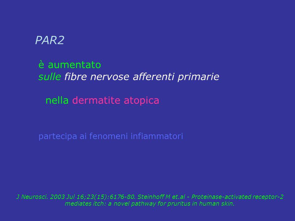 PAR2 è aumentato sulle fibre nervose afferenti primarie nella dermatite atopica partecipa ai fenomeni infiammatori J Neurosci. 2003 Jul 16;23(15):6176