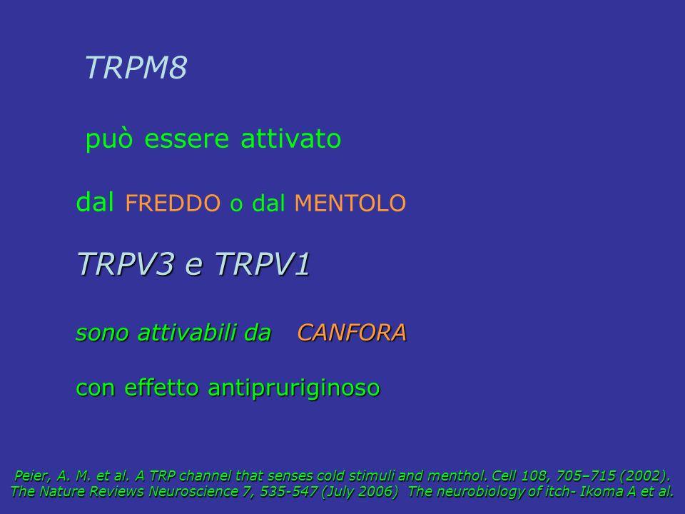 TRPM8 può essere attivato dal FREDDO o dal MENTOLO TRPV3 e TRPV1 sono attivabili da CANFORA con effetto antipruriginoso Peier, A. M. et al. A TRP chan