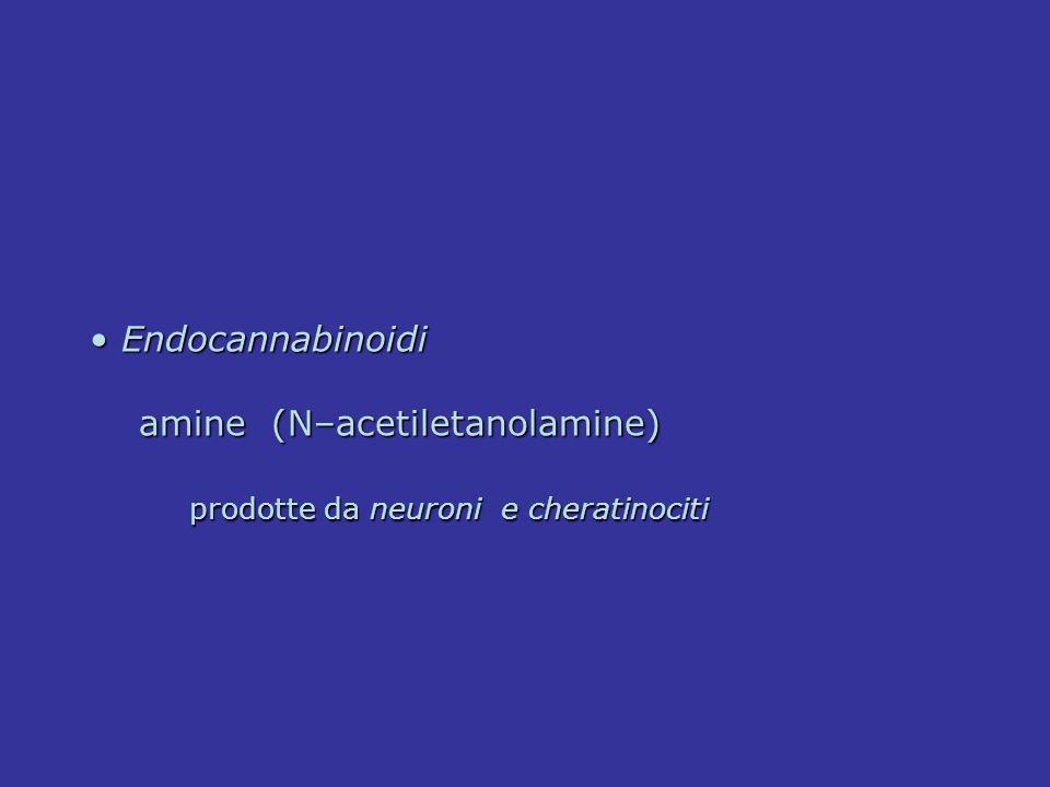 Endocannabinoidi Endocannabinoidi amine (N–acetiletanolamine) amine (N–acetiletanolamine) prodotte da neuroni e cheratinociti prodotte da neuroni e ch