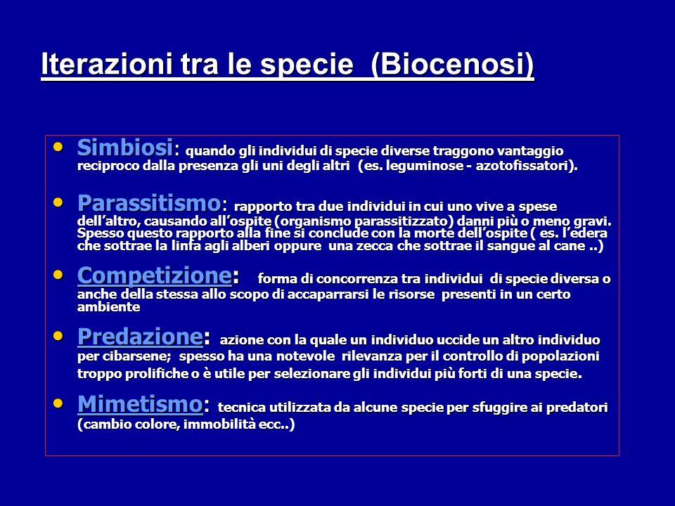 Iterazioni tra le specie (Biocenosi) Simbiosi : quando gli individui di specie diverse traggono vantaggio reciproco dalla presenza gli uni degli altri (es.