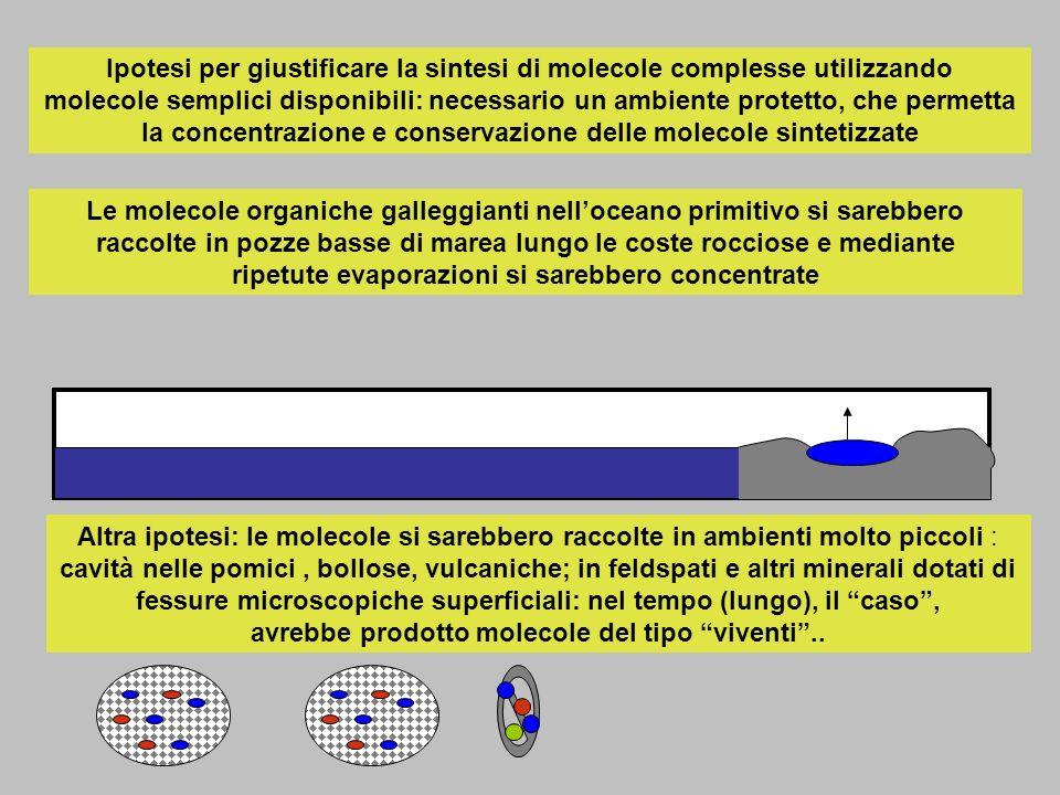 Ipotesi per giustificare la sintesi di molecole complesse utilizzando molecole semplici disponibili: necessario un ambiente protetto, che permetta la