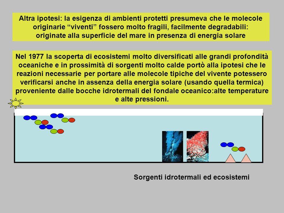 Altra ipotesi: la esigenza di ambienti protetti presumeva che le molecole originarie viventi fossero molto fragili, facilmente degradabili: originate