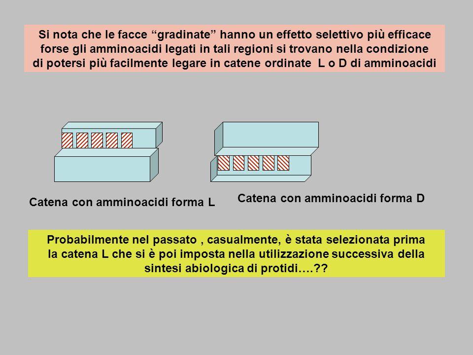 Si nota che le facce gradinate hanno un effetto selettivo più efficace forse gli amminoacidi legati in tali regioni si trovano nella condizione di pot