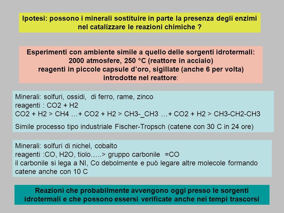 Ipotesi: possono i minerali sostituire in parte la presenza degli enzimi nel catalizzare le reazioni chimiche ? Esperimenti con ambiente simile a quel