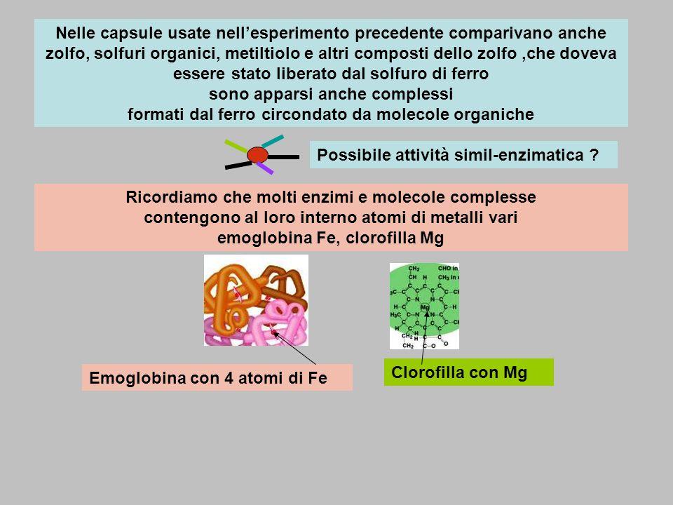 Nelle capsule usate nellesperimento precedente comparivano anche zolfo, solfuri organici, metiltiolo e altri composti dello zolfo,che doveva essere st