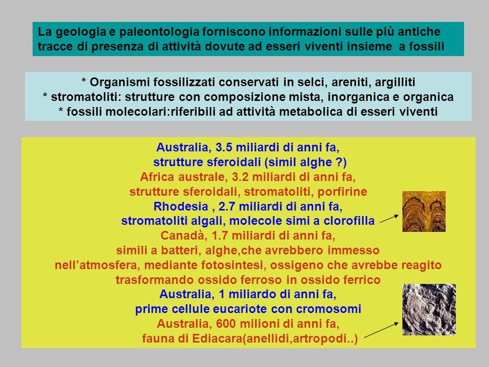 La geologia e paleontologia forniscono informazioni sulle più antiche tracce di presenza di attività dovute ad esseri viventi insieme a fossili * Orga
