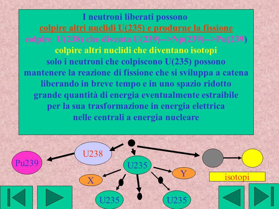 I neutroni liberati possono colpire altri nuclidi U(235) e produrne la fissione colpire U(238) che diventa U(239)-->Np(239)-->Pu(239) colpire altri nuclidi che diventano isotopi solo i neutroni che colpiscono U(235) possono mantenere la reazione di fissione che si sviluppa a catena liberando in breve tempo e in uno spazio ridotto grande quantità di energia eventualmente estraibile per la sua trasformazione in energia elettrica nelle centrali a energia nucleare isotopi U238 Pu239 U235 X Y