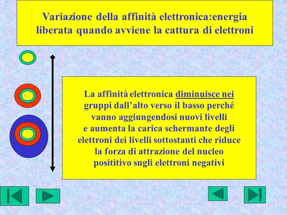 Variazione della affinità elettronica:energia liberata quando avviene la cattura di elettroni La affinità elettronica diminuisce nei gruppi dallalto verso il basso perché vanno aggiungendosi nuovi livelli e aumenta la carica schermante degli elettroni dei livelli sottostanti che riduce la forza di attrazione del nucleo posititivo sugli elettroni negativi