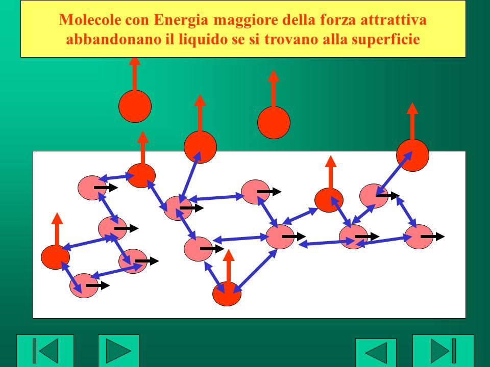 Molecole con Energia maggiore della forza attrattiva abbandonano il liquido se si trovano alla superficie