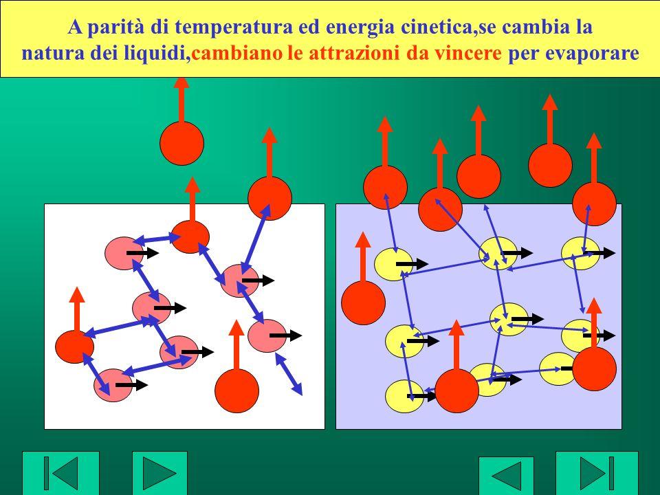A parità di temperatura ed energia cinetica,se cambia la natura dei liquidi,cambiano le attrazioni da vincere per evaporare