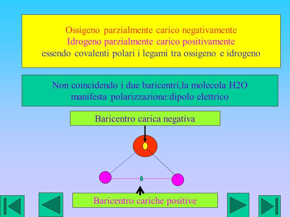Ossigeno parzialmente carico negativamente Idrogeno parzialmente carico positivamente essendo covalenti polari i legami tra ossigeno e idrogeno Baricentro cariche positive Baricentro carica negativa Non coincidendo i due baricentri,la molecola H2O manifesta polarizzazione:dipolo elettrico