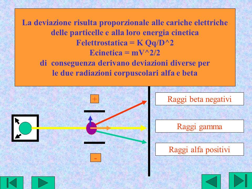 Raggi beta negativi Raggi gamma Raggi alfa positivi + - La deviazione risulta proporzionale alle cariche elettriche delle particelle e alla loro energia cinetica Felettrostatica = K Qq/D^2 Ecinetica = mV^2/2 di conseguenza derivano deviazioni diverse per le due radiazioni corpuscolari alfa e beta