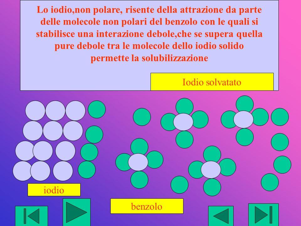 benzolo iodio Lo iodio,non polare, risente della attrazione da parte delle molecole non polari del benzolo con le quali si stabilisce una interazione debole,che se supera quella pure debole tra le molecole dello iodio solido permette la solubilizzazione Iodio solvatato