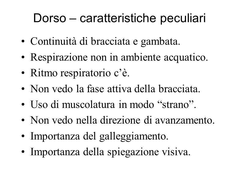 Dorso – caratteristiche peculiari Continuità di bracciata e gambata.